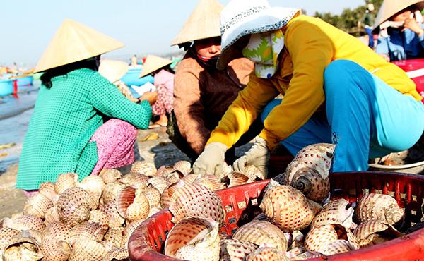chợ hải sản Mũi Né